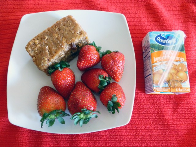 Diet to Go Cinnamon Bar and Berries