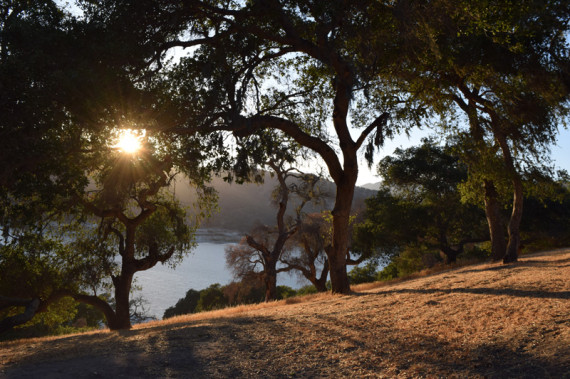 Blissfully Unplugged: Camping in Lopez Lake - Double Chin ...